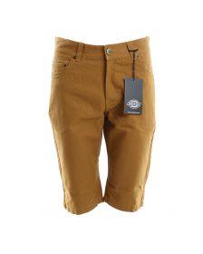Pantaloni scurti & bermude DICKIES
